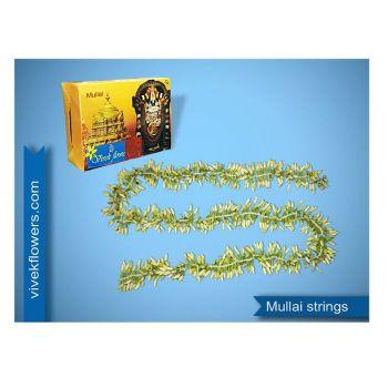 Mullai Strings( 6ft string))
