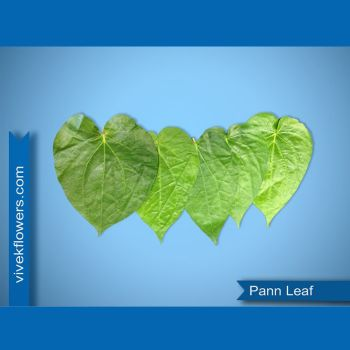 Paan Leaf ( upon Available)