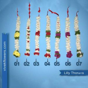 Lilly Thoron - Garland