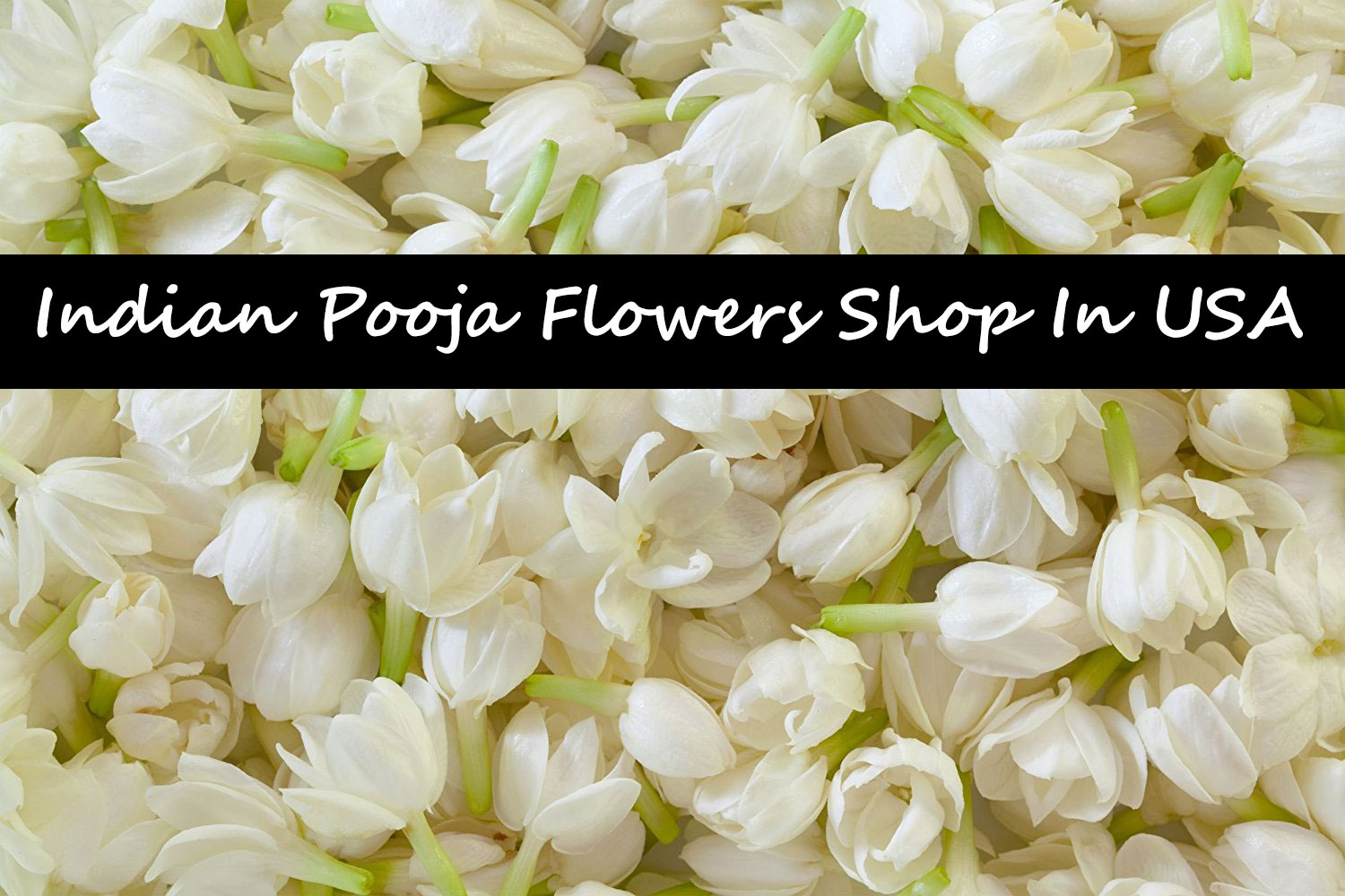 Shop in USA that Sell Flowers near me for Indian Pooja